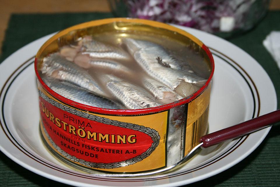 Weirdest Foods: Surströmming